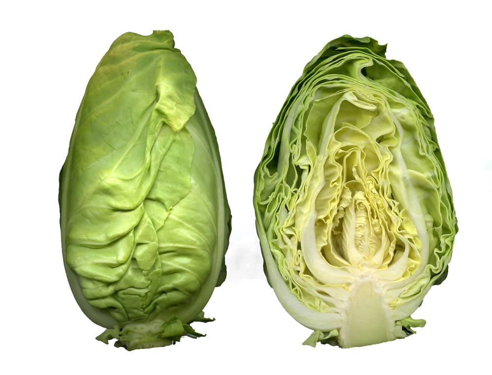 Regionales Gemüse Spitzkohl